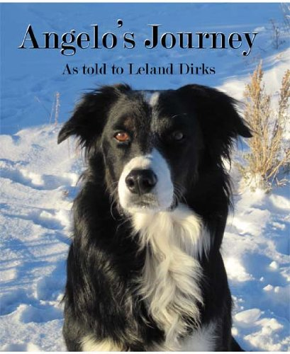 Angelo's journey