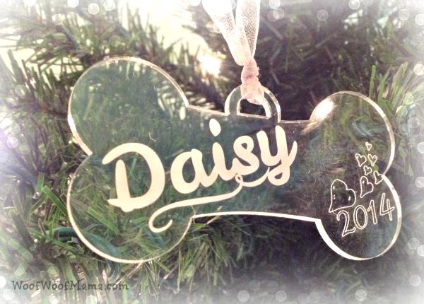 daisy2104