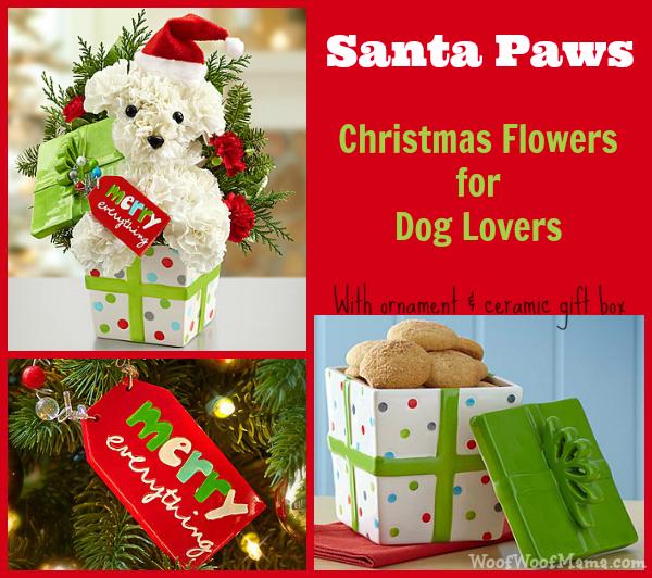 dog flowers santa