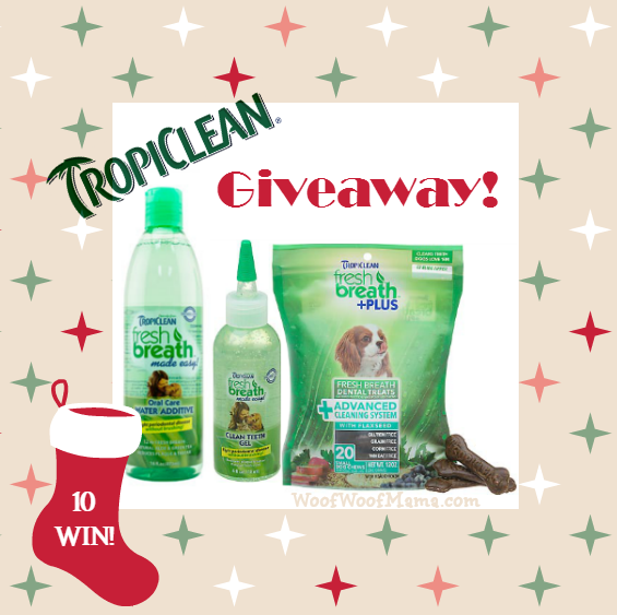 tclean prize