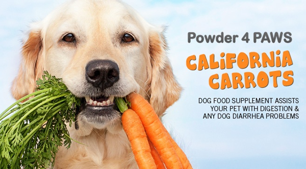 free sample carrots dogs