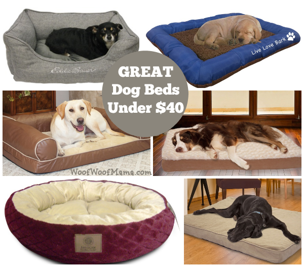 great pet beds under 40