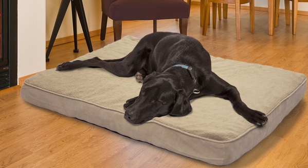 Pet Deal Roundup 6 Great Dog Beds Under 40 Each Woof