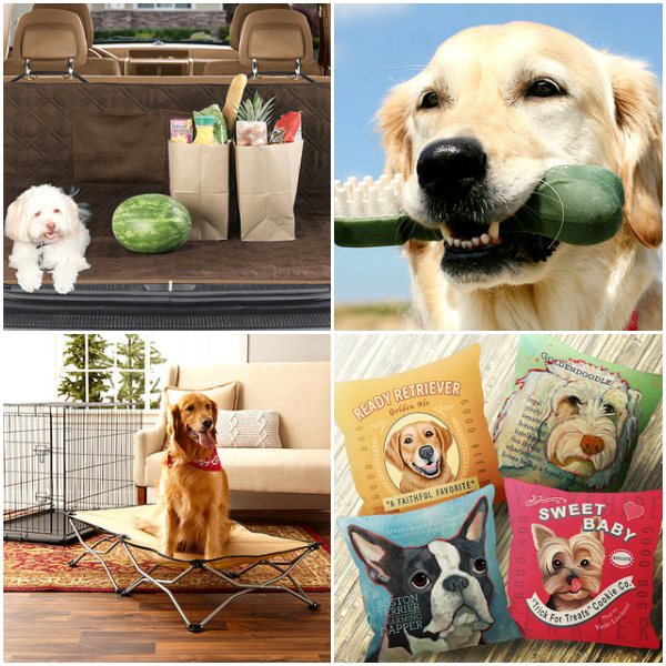zulily pet deals