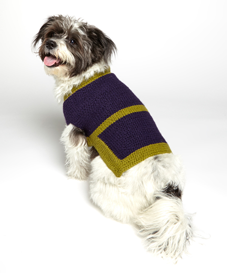 cute diy dog sweater