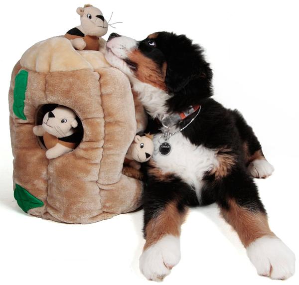 Dog Toy Squirrels Stump