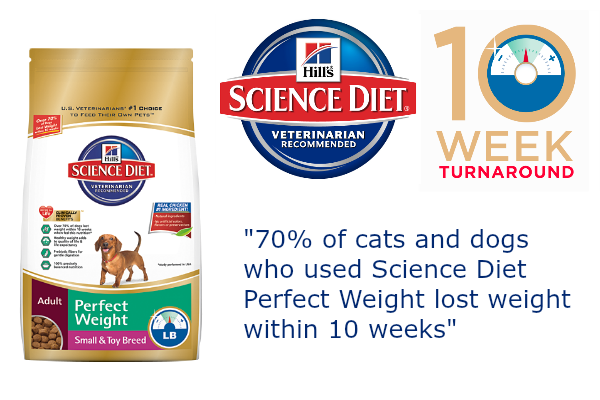 10 week weight loss pets