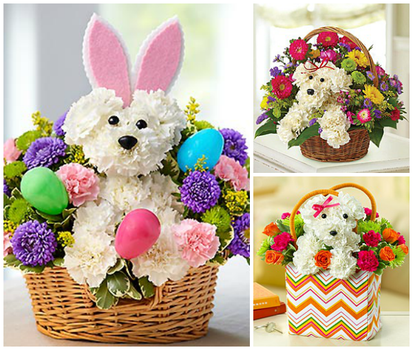 dog flowers easter