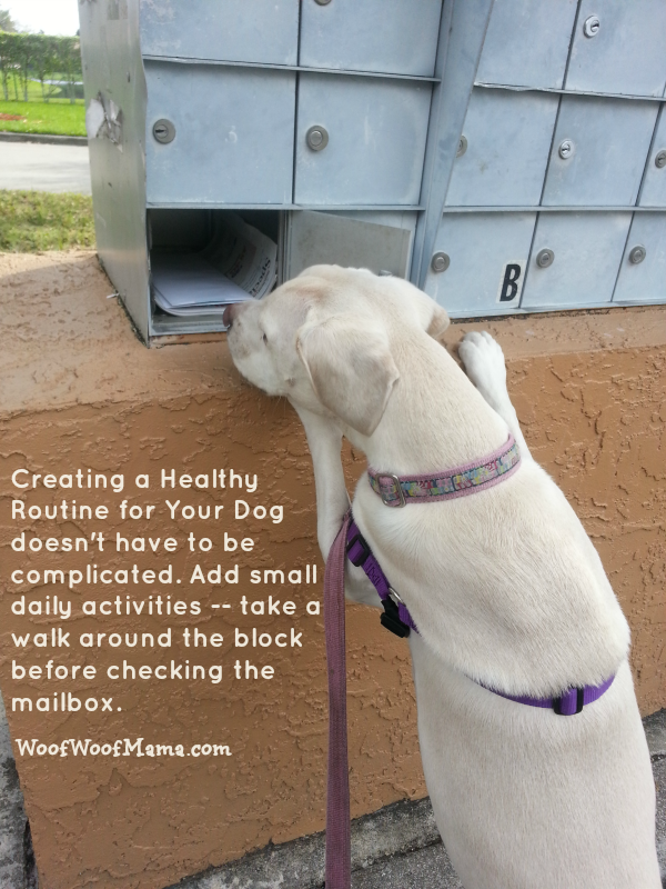 mailbox routine