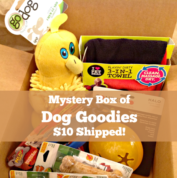 deal on dog mystery box
