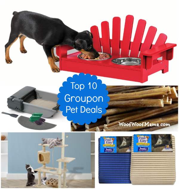 10 groupon pet deals woof woof mama. Black Bedroom Furniture Sets. Home Design Ideas