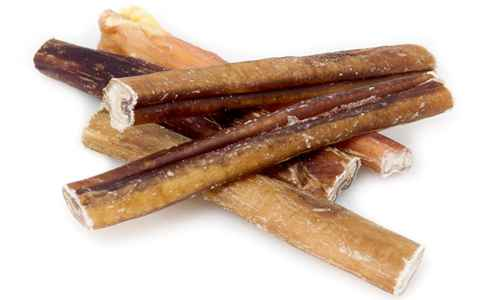 bully sticks dog chews