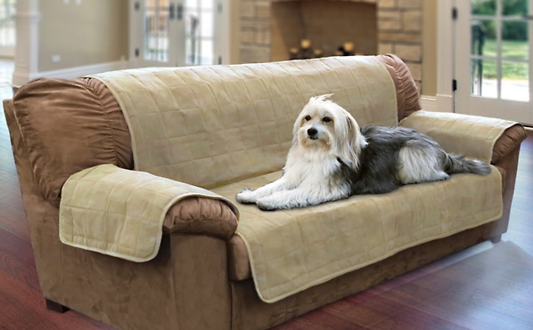 pet sofa protect