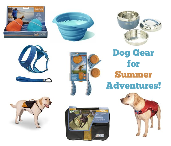 summer dog gear