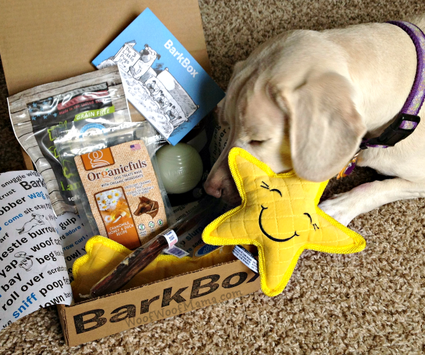 daisy barkbox sep15