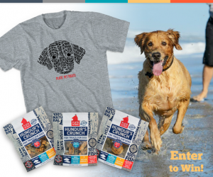 WIN Plato Pet Treats for your dog!