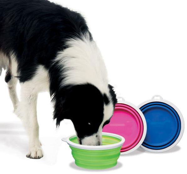 travel dog bowls