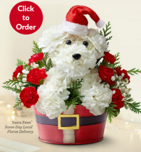 Santa Paws Christmas Flowers for Dog Lovers
