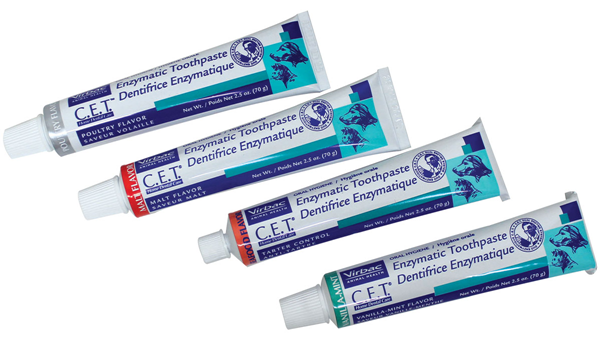 cet toothpaste back in stock