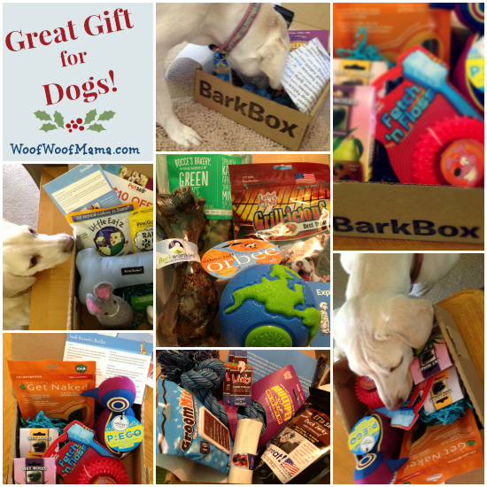 BarkBox Promo Code for Christmas