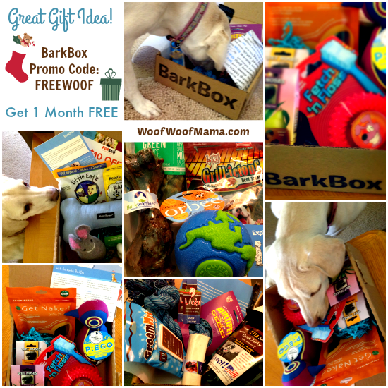 Promo Code for FREE Month of BarkBox
