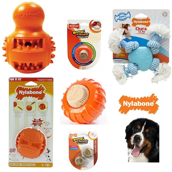 Nylabone Treat Toys
