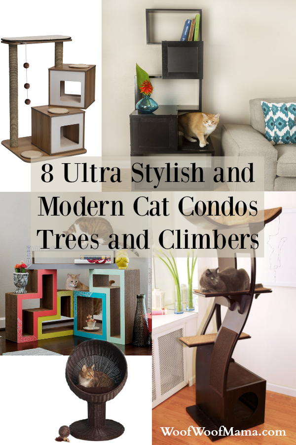 Stylish Modern Cat Furniture List