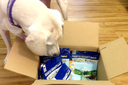 We're Giving Away Natural Balance Dental Chews for Dogs (10 Winners)