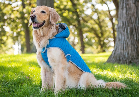 Eddie Bauer Hooded Dog Coat