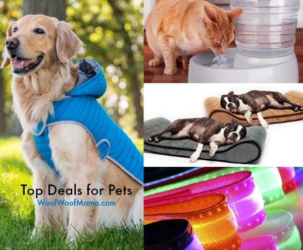 Top Pet Deals at Groupon