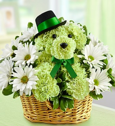 Lucky Dog Flowers for St Patricks Day