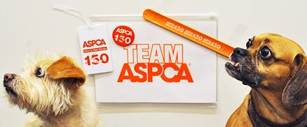 ASPCA Pride Pack