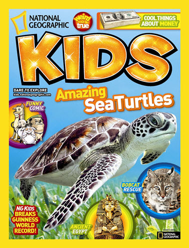 Sea Turtles for kids