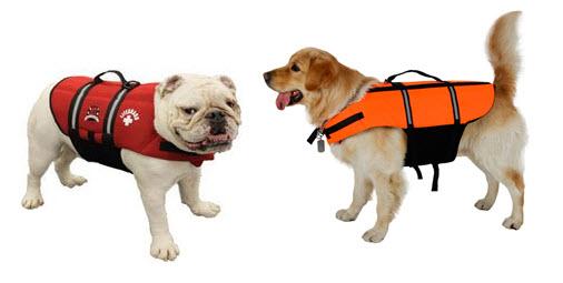 dog h2o jackets