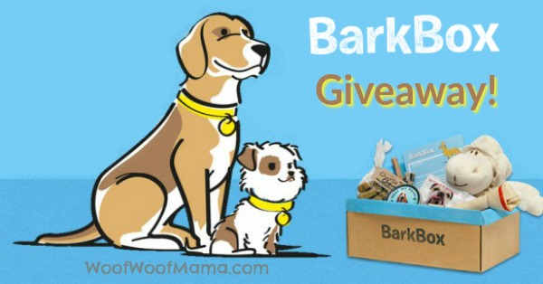 BarkBox Giveaway Summer