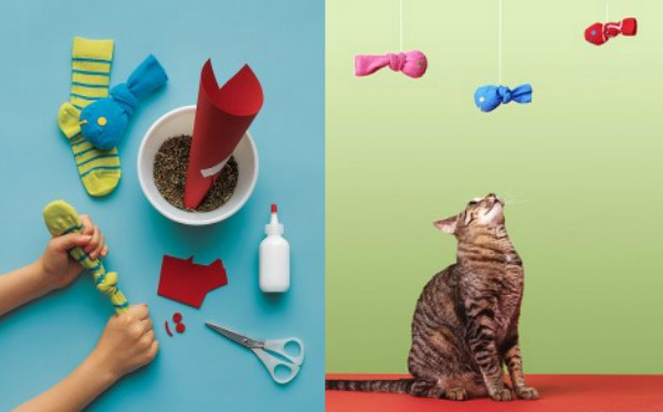 DIY Catnip Toy Kids Craft