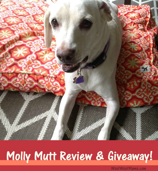 Dog Bed Review Molly Mutt