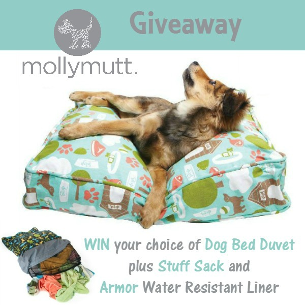 Molly Mutt Dog Bed Giveaway