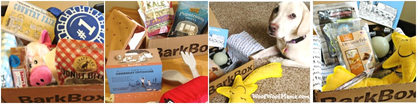 Recent BarkBox Reviews