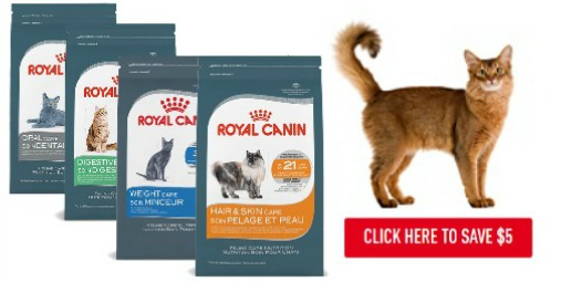 graphic about Royal Canin Printable Coupon called Royal Canin Coupon $5 OFF Feline Treatment Vitamins Cat Food stuff