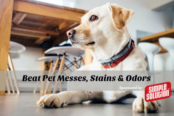Simple Solution Pet Stain Odor Remover