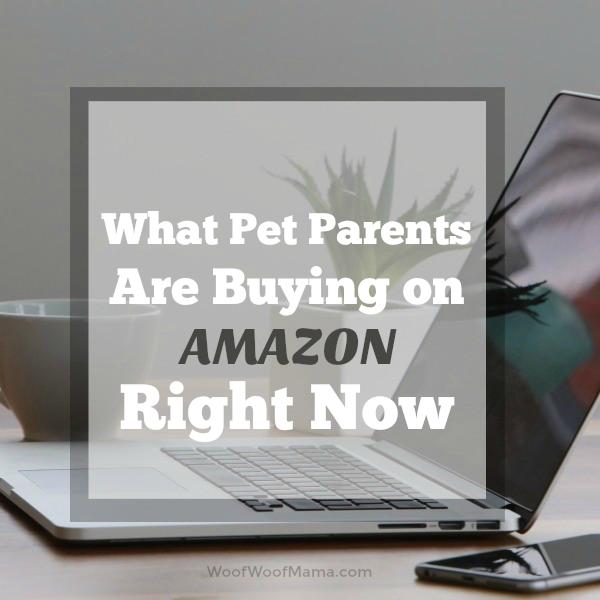 Amazon Popular Pet August