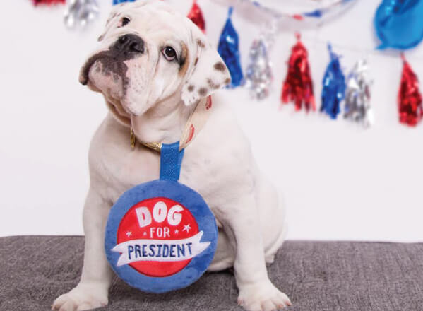 Dog for President Button