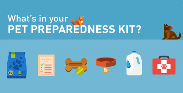 prepare-for-pet-emergency-kit
