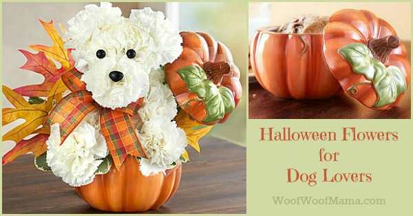 halloween-dog-lover-flowers-2016
