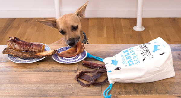 Farm To Table Gift Bag Of Natural Meat Treats For Dogs