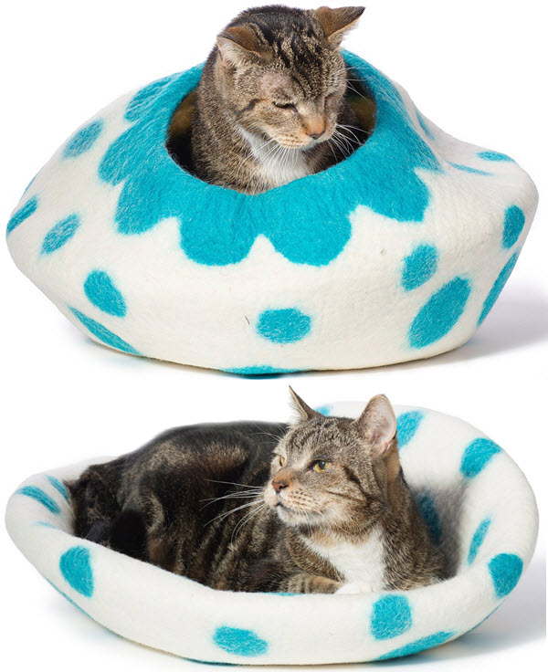 white-aqua-kitty-pod
