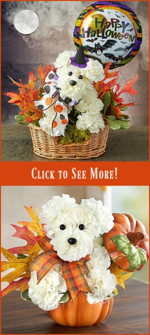 Halloween Flowers for Dog Lovers