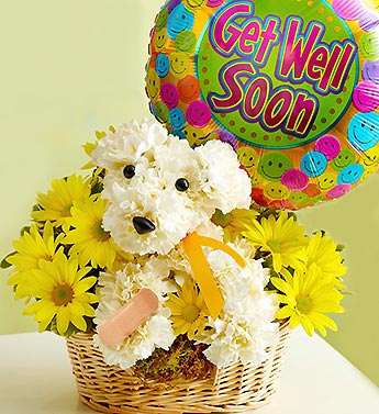 get-well-dog-flowers