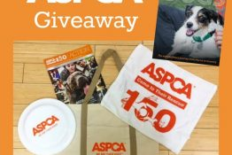New ASPCA Documentary Second Chance Dogs Now On Netflix